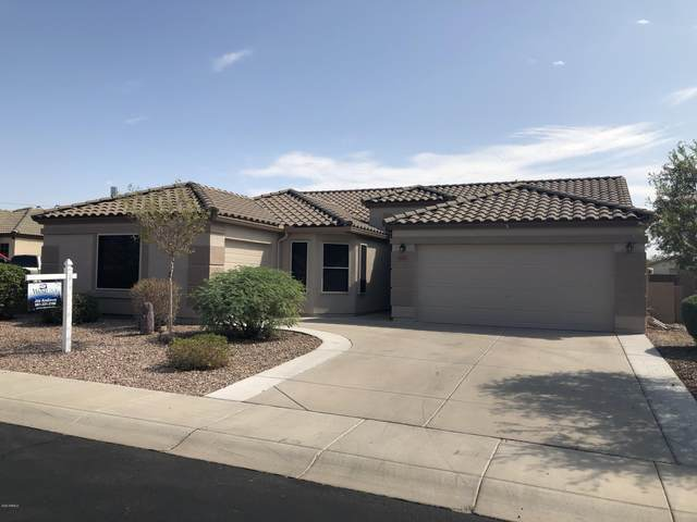 1293 S 229TH Avenue, Buckeye, AZ 85326 (MLS #6132680) :: REMAX Professionals