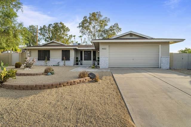 14602 N 22ND Street, Phoenix, AZ 85022 (MLS #6132763) :: Brett Tanner Home Selling Team
