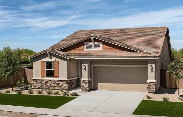 838 S 172ND Avenue, Goodyear, AZ 85338 (MLS #6132770) :: Kepple Real Estate Group