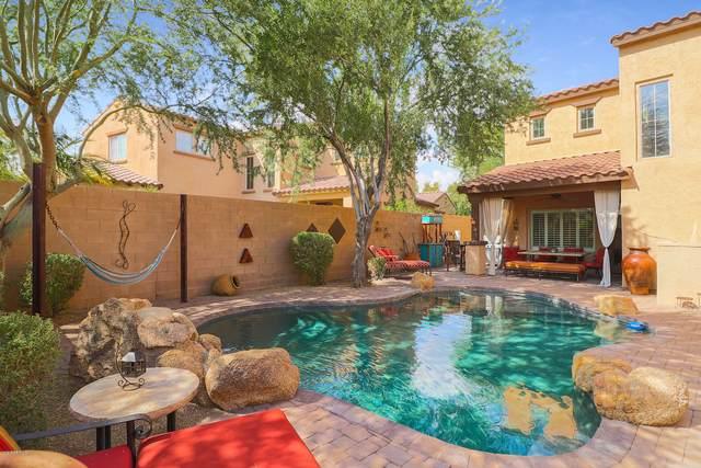20423 W Springfield Street, Buckeye, AZ 85396 (MLS #6132776) :: REMAX Professionals