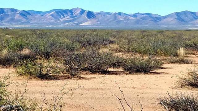 Lot 21 W Drifters Way, McNeal, AZ 85617 (MLS #6132808) :: neXGen Real Estate