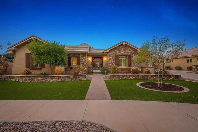 2220 E Mead Drive, Gilbert, AZ 85298 (MLS #6132826) :: Klaus Team Real Estate Solutions