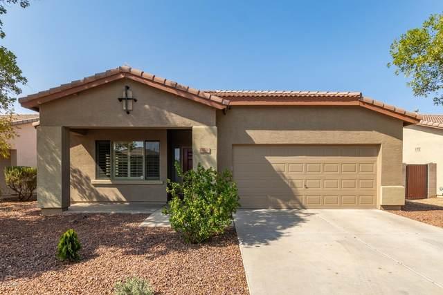 9716 W Horse Thief Pass, Tolleson, AZ 85353 (MLS #6132828) :: Brett Tanner Home Selling Team