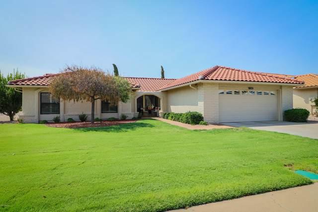 1344 Leisure World, Mesa, AZ 85206 (MLS #6132857) :: Brett Tanner Home Selling Team