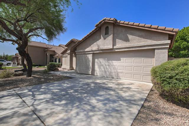 3416 N Olympic Circle, Mesa, AZ 85215 (MLS #6132864) :: Lucido Agency