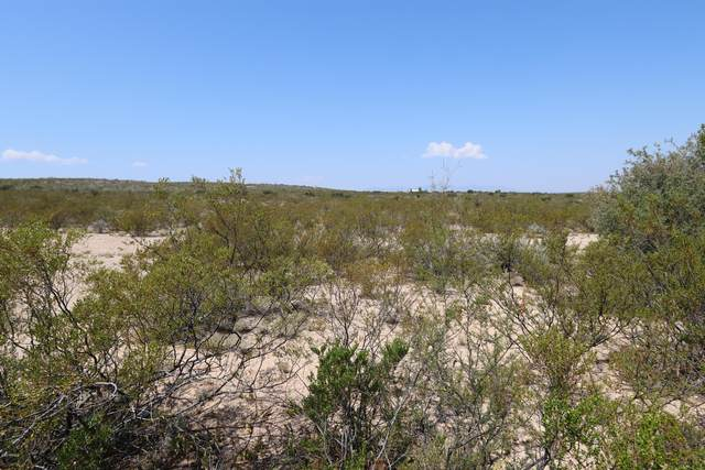 TBD N Via Loma Linda Drive, Tombstone, AZ 85638 (MLS #6132900) :: Long Realty West Valley