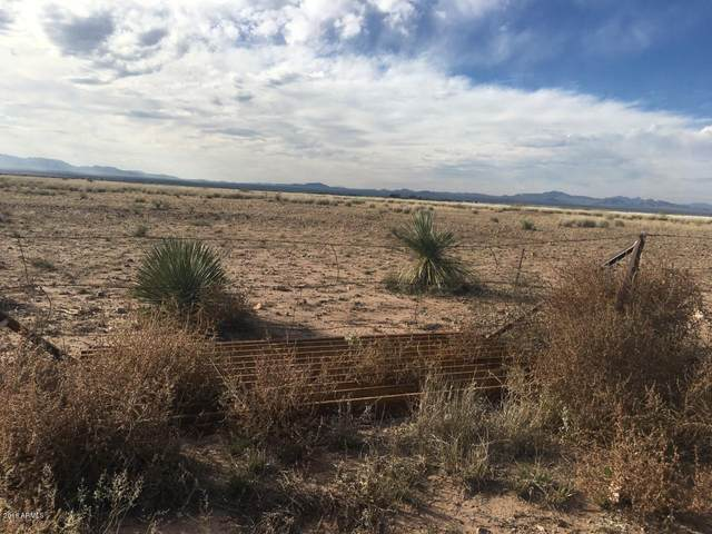 XXXX NE Ranch Road, McNeal, AZ 85617 (MLS #6132946) :: Yost Realty Group at RE/MAX Casa Grande