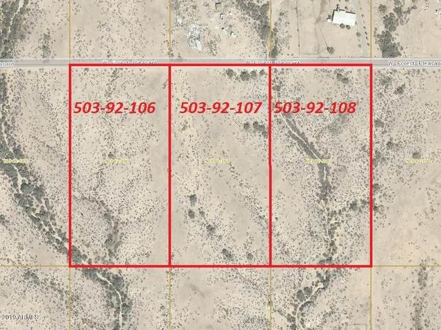 307xx W Forest Pleasant Place, Wittmann, AZ 85361 (MLS #6132970) :: RE/MAX Desert Showcase