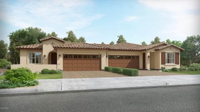 17240 W Wind Drive, Surprise, AZ 85387 (MLS #6132987) :: Brett Tanner Home Selling Team