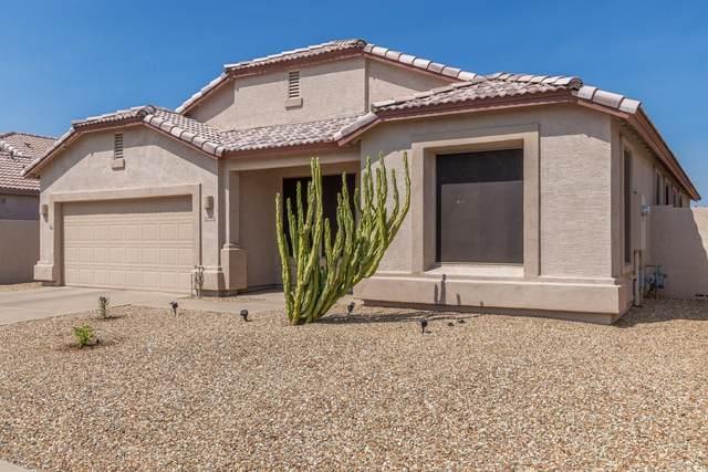 10938 W Chase Lane, Avondale, AZ 85323 (MLS #6133014) :: Brett Tanner Home Selling Team