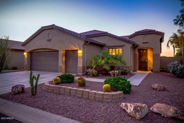 5406 N Mica Lane, Eloy, AZ 85131 (MLS #6133041) :: Lucido Agency