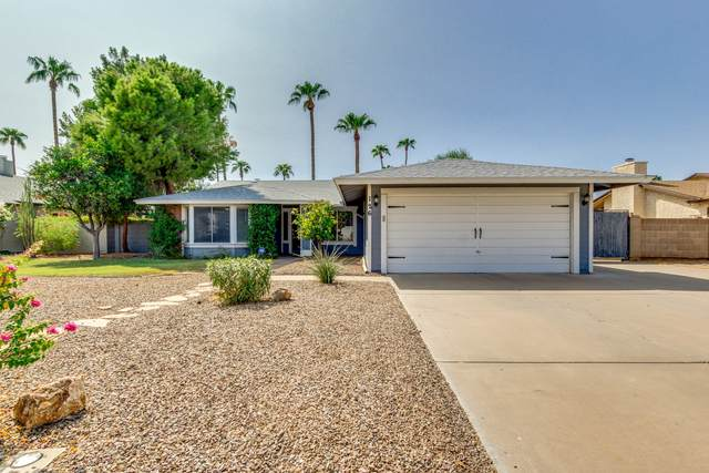 126 S Terrace Road, Chandler, AZ 85226 (MLS #6133073) :: Brett Tanner Home Selling Team
