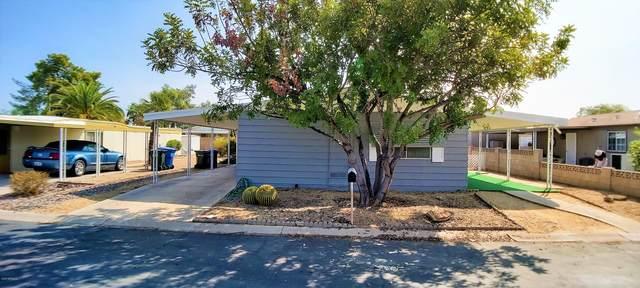 16433 N 32ND Way, Phoenix, AZ 85032 (MLS #6133130) :: Conway Real Estate