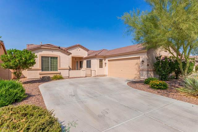43306 W Oster Drive, Maricopa, AZ 85138 (MLS #6133136) :: Brett Tanner Home Selling Team