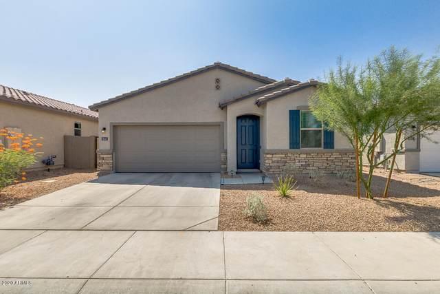 3243 W Carter Road, Phoenix, AZ 85041 (MLS #6133152) :: Conway Real Estate