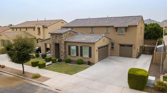 20857 E Via De Arboles, Queen Creek, AZ 85142 (MLS #6133154) :: Balboa Realty