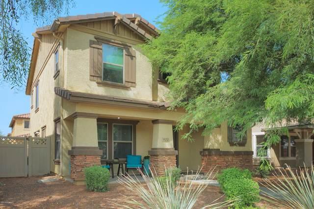 933 S Hawk Lane, Gilbert, AZ 85296 (MLS #6133229) :: Conway Real Estate