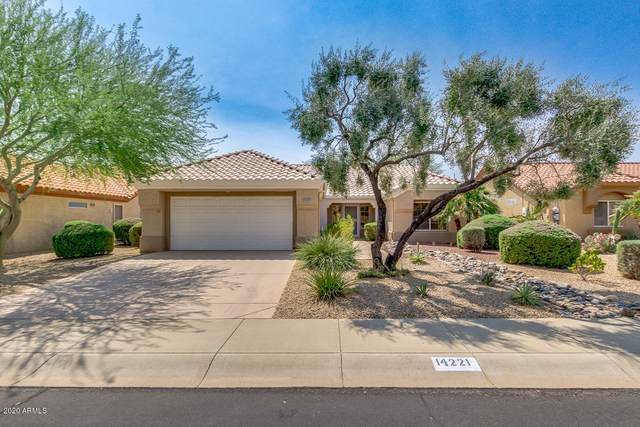 14221 W Via Manana, Sun City West, AZ 85375 (MLS #6133235) :: NextView Home Professionals, Brokered by eXp Realty