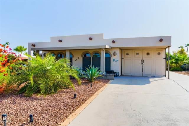 25645 S Montana Avenue, Sun Lakes, AZ 85248 (MLS #6133267) :: The Laughton Team
