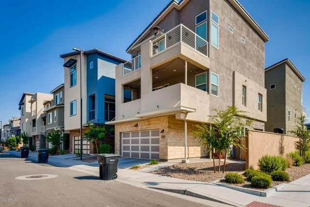 7101 W Stardust Drive, Chandler, AZ 85226 (MLS #6133284) :: Brett Tanner Home Selling Team