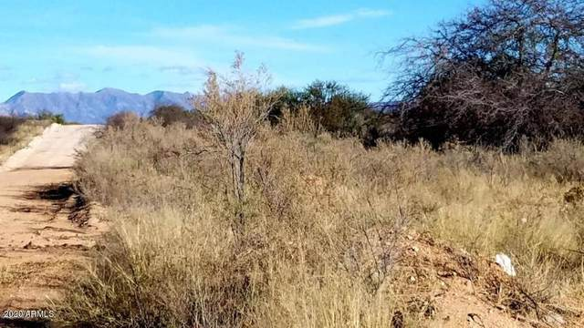 Lot 54 W Foothills Trail, Elfrida, AZ 85610 (MLS #6133290) :: Scott Gaertner Group