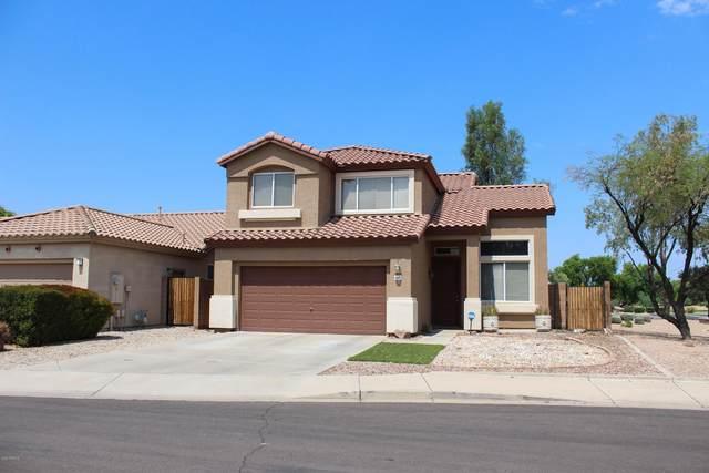 6610 W Megan Street, Chandler, AZ 85226 (MLS #6133294) :: Brett Tanner Home Selling Team