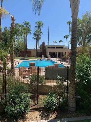 3500 N Hayden Road #203, Scottsdale, AZ 85251 (MLS #6133298) :: Dave Fernandez Team | HomeSmart