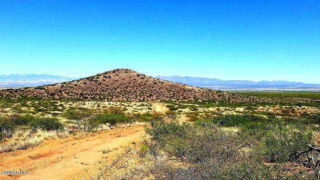 Lot 96 N Rambling Road, Elfrida, AZ 85610 (MLS #6133302) :: Yost Realty Group at RE/MAX Casa Grande