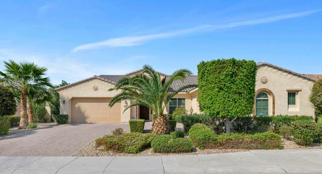 2060 N 159TH Avenue, Goodyear, AZ 85395 (MLS #6133307) :: The AZ Performance PLUS+ Team