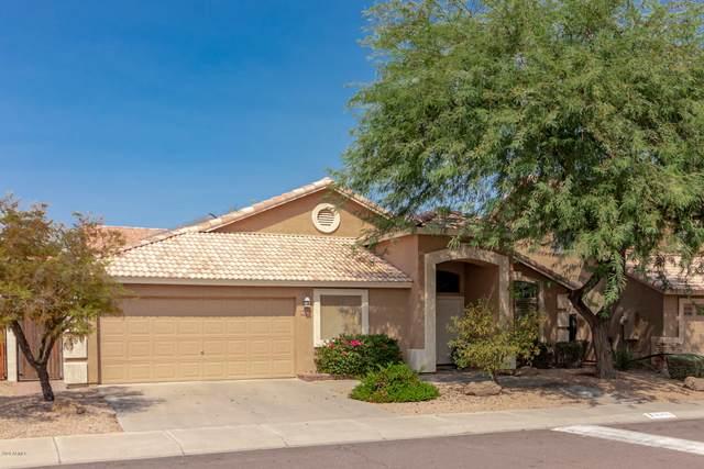 4030 E Agave Road, Phoenix, AZ 85044 (MLS #6133321) :: Dijkstra & Co.