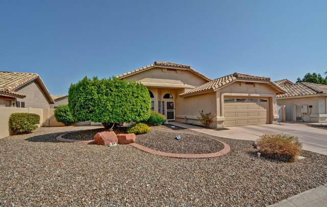 14410 W Kiowa Trail, Surprise, AZ 85374 (MLS #6133334) :: Long Realty West Valley