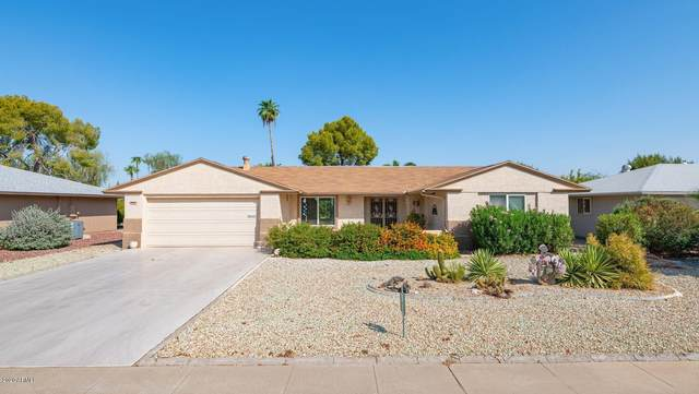 9910 W Burns Drive, Sun City, AZ 85351 (MLS #6133338) :: Dijkstra & Co.