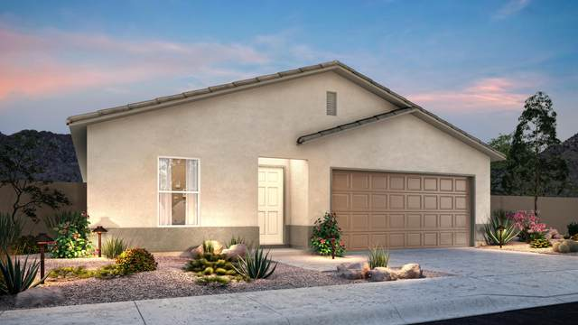 1624 Paige Drive, Bullhead City, AZ 86442 (MLS #6133390) :: Nate Martinez Team