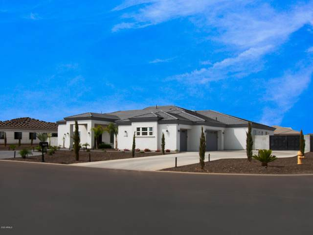 15904 W Cinnabar Court, Waddell, AZ 85355 (MLS #6133394) :: The Everest Team at eXp Realty