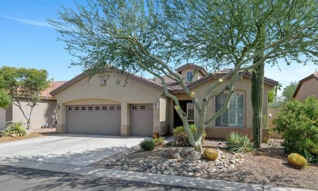 2451 N 163RD Drive, Goodyear, AZ 85395 (MLS #6133396) :: D & R Realty LLC