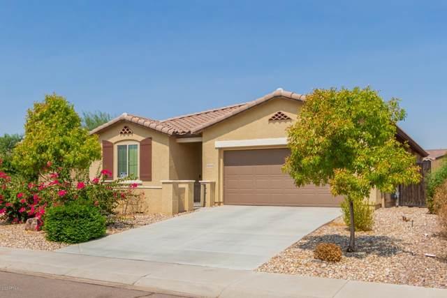 12222 W Overlin Lane, Avondale, AZ 85323 (MLS #6133407) :: The AZ Performance PLUS+ Team