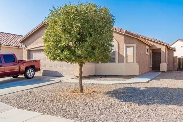 1790 E Chaparral Drive, Casa Grande, AZ 85122 (#6133410) :: AZ Power Team   RE/MAX Results
