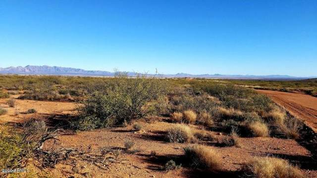 Lot 82 N High Lonesome Road, Elfrida, AZ 85610 (MLS #6133414) :: Scott Gaertner Group