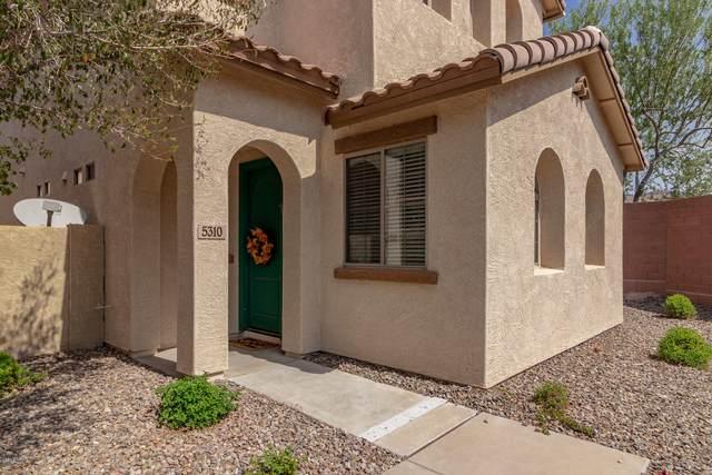 5310 W Chisum Trail, Phoenix, AZ 85083 (MLS #6133438) :: RE/MAX Desert Showcase