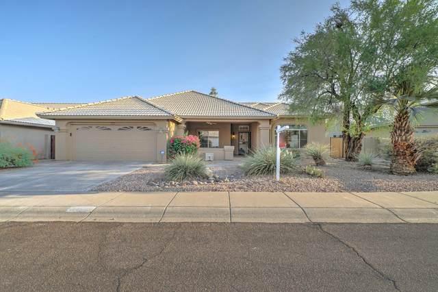 4207 E Cathedral Rock Drive, Phoenix, AZ 85044 (MLS #6133470) :: The Laughton Team