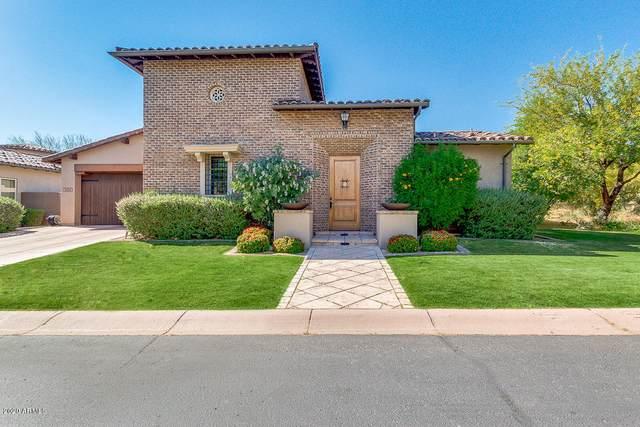 9864 E Buteo Drive, Scottsdale, AZ 85255 (MLS #6133501) :: The Laughton Team