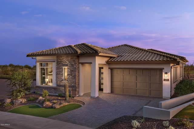 12001 W Creosote Drive, Peoria, AZ 85383 (MLS #6133508) :: Long Realty West Valley