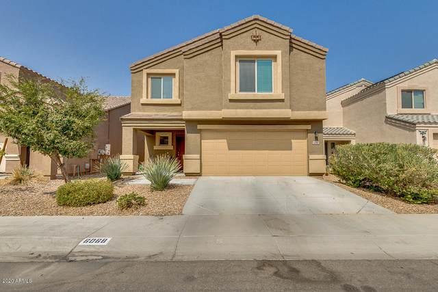 6068 E Sotol Drive, Florence, AZ 85132 (MLS #6133509) :: Balboa Realty