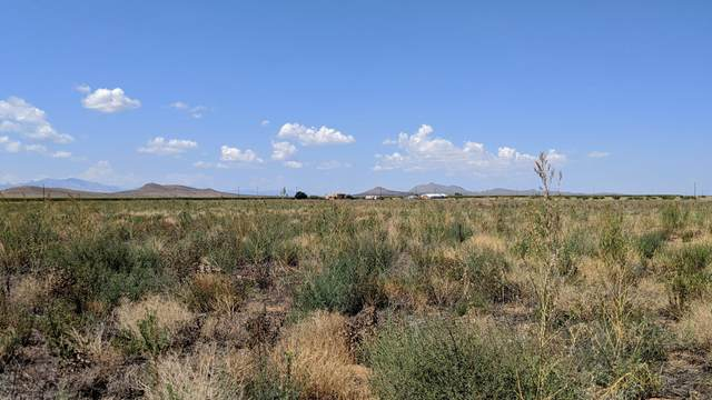 3.34 Acres (3Lots) E. Chiricahua Drive, Pearce, AZ 85625 (MLS #6133517) :: Devor Real Estate Associates