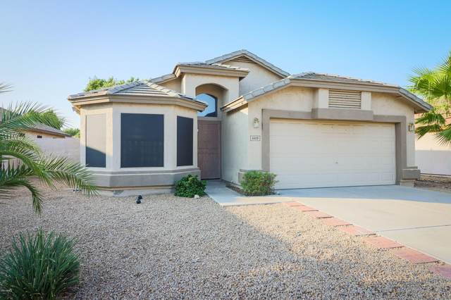 6419 W Adobe Drive, Glendale, AZ 85308 (MLS #6133533) :: Conway Real Estate