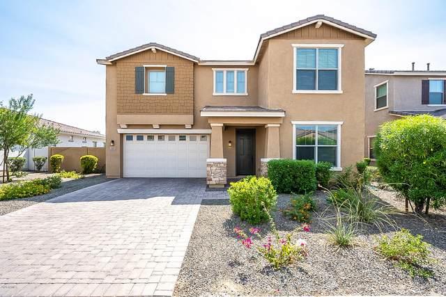 1507 W Sea Fog Drive, Gilbert, AZ 85233 (MLS #6133561) :: Homehelper Consultants