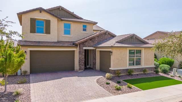 9717 E Theia Drive, Mesa, AZ 85212 (MLS #6133570) :: Arizona Home Group