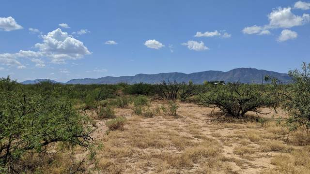 1.26 Acres On W. Pearce Road, Pearce, AZ 85625 (MLS #6133575) :: The Everest Team at eXp Realty