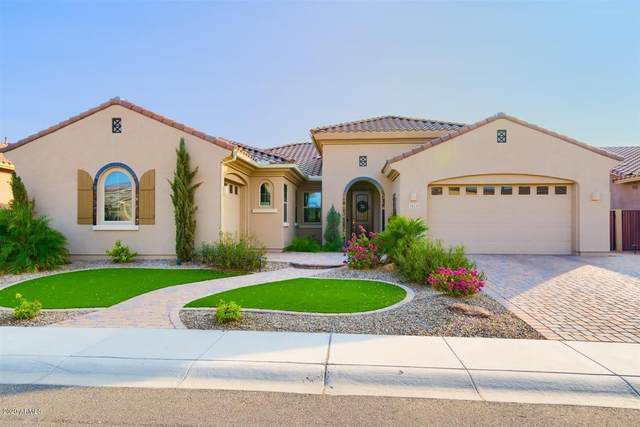 3523 E Honeysuckle Drive, Chandler, AZ 85286 (MLS #6133586) :: Dijkstra & Co.