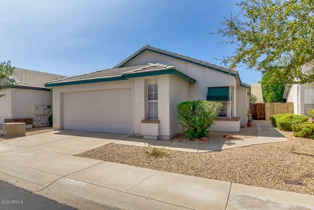 15814 N 5TH Drive, Phoenix, AZ 85023 (MLS #6133590) :: RE/MAX Desert Showcase